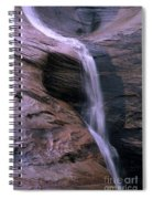 Zion Summer Waterfall Spiral Notebook