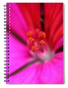 Zonal Geranium Named Tango Neon Purple Spiral Notebook