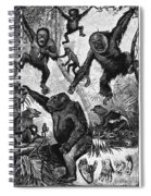 Zoology: Primates, 1883 Spiral Notebook