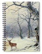 A Stag In A Wooded Landscape  Spiral Notebook