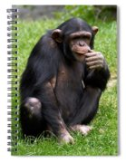 About The Reason Of Life Spiral Notebook