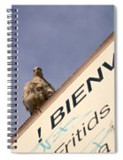African Collared Dove 2 Spiral Notebook