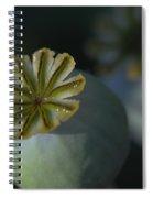 After The Flower 2 Spiral Notebook