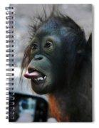 Baby Orangutan Spiral Notebook