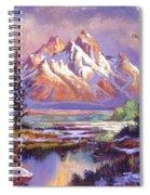 Breaking Winter Sunlight Spiral Notebook