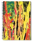 Bridgestone Cacti Spiral Notebook