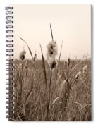 Broadleaf Cattail 1 Spiral Notebook