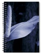 Calla 2 Spiral Notebook