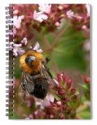 Cuckoo Bumblebee 2 Spiral Notebook