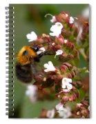 Cuckoo Bumblebee Spiral Notebook
