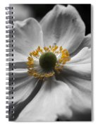Dreamy Japanese Anenome Honorine Joubert 4 Spiral Notebook