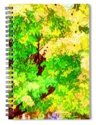 Fall Leaves 1 Spiral Notebook