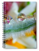 Friendly Company Of Rain Droplets On A Flower Cereal Spiral Notebook