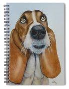Hound Dog Eyes Spiral Notebook