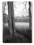 Liesilampi 3 Spiral Notebook