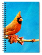 Male Northern Cardinal Perched On Tree Branch Spiral Notebook