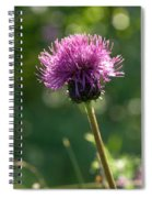 Melancholy Thistle Spiral Notebook
