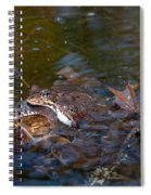 Mixed Frogs Spiral Notebook
