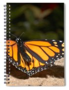 Monarch 2 Spiral Notebook