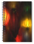 Orange Lantern Spiral Notebook