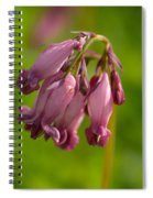 Pacific Bleeding Heart 1 Spiral Notebook