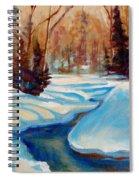 Peaceful Winding Stream Spiral Notebook