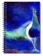 Peacock Blue Spiral Notebook
