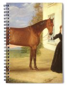 Portrait Of A Lady With Her Horse Spiral Notebook