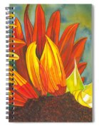Ray  Spiral Notebook