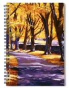Road Of Golden Beauty Spiral Notebook