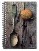 Rock Needle And Spoon Spiral Notebook