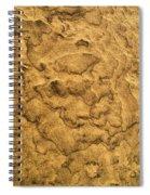 Sand Map Spiral Notebook