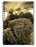 Shrub In Santa Fe Spiral Notebook