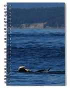 Southern Resident Orcas And Salmon Off The San Juan Islands Playing With Salmon Spiral Notebook