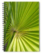 Spiny Fiber Palm Spiral Notebook