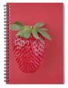 Strawberry In Red I Spiral Notebook
