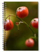 The Berries Of The Lily Of The Valley Spiral Notebook