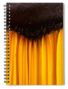 The Curtains Spiral Notebook