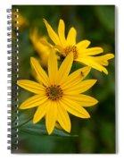 The Jerusalem Artichoke Spiral Notebook