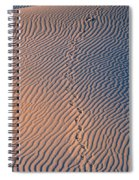 Tracks At First Light In Death Valley Spiral Notebook