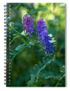 Tufted Vetch Spiral Notebook