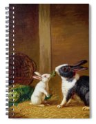 Two Rabbits Spiral Notebook