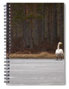 Whooper Swans Spiral Notebook