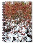 Winter Harvest 2 Spiral Notebook