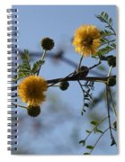 Yellow Minosa Spiral Notebook