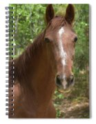0005 Spiral Notebook