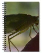 0007 Spiral Notebook