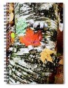 001 Spiral Notebook