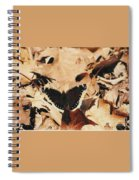 #002 Nymphalis Antiopa, Mourning Cloak Camberwell Beauty Large Butterfly Anglewing Spiral Notebook