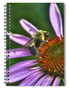 02 Bee And Echinacea Spiral Notebook
